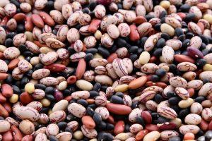 Elitsa Dineva shelley-pauls-t4X660oKiYs-unsplash-300x200 Candida overgrowth - how to treat it naturally Uncategorized
